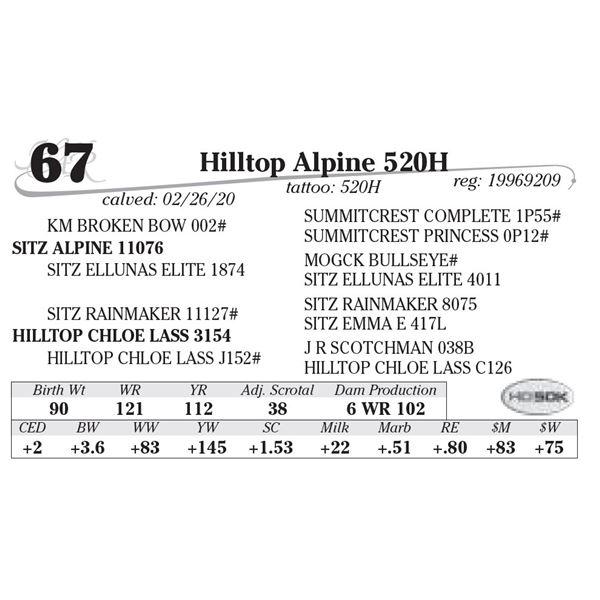 Hilltop Alpine 520H