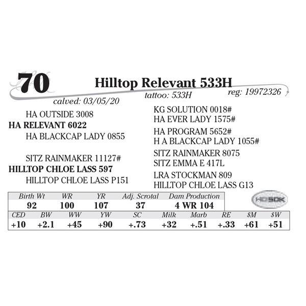 Hilltop Relevant 533H