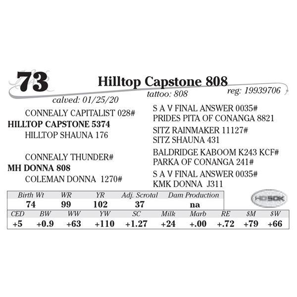 Hilltop Capstone 808