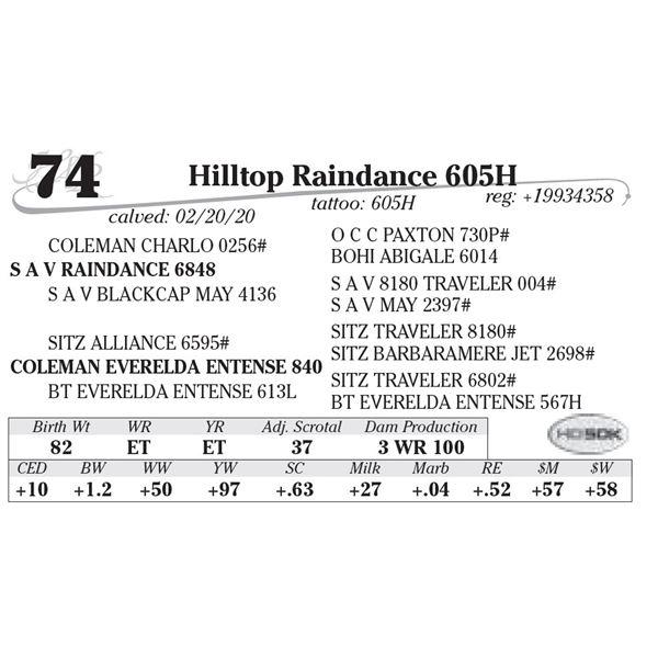 Hilltop Raindance 605H