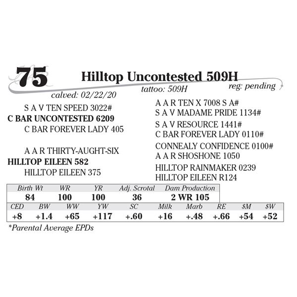 Hilltop Uncontested 509H