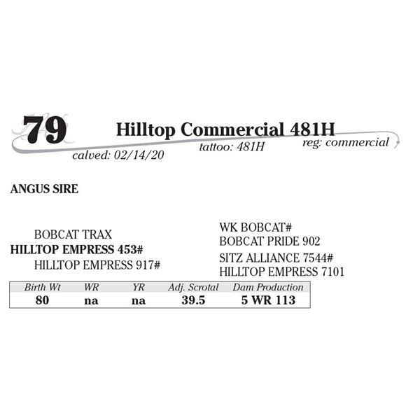 Hilltop Commercial 481H