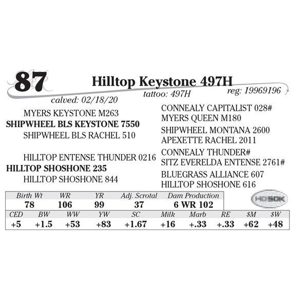 Hilltop Keystone 497H