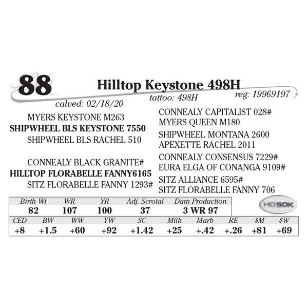 Hilltop Keystone 498H