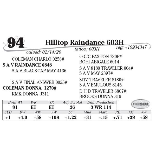 Hilltop Raindance 603H
