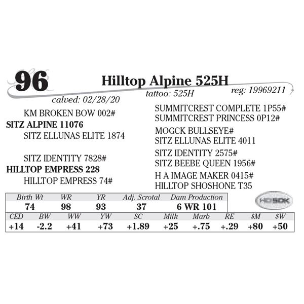 Hilltop Alpine 525H