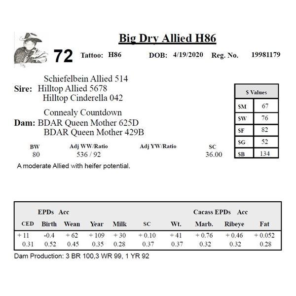 Big Dry Allied H86