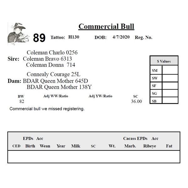 Commercial Bull H130