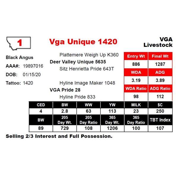 Vga Unique 1420