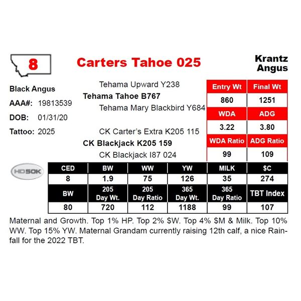 Carters Tahoe 025