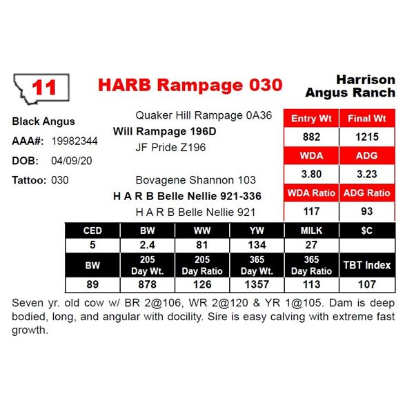 OUT OF SALE - HARB Rampage 030