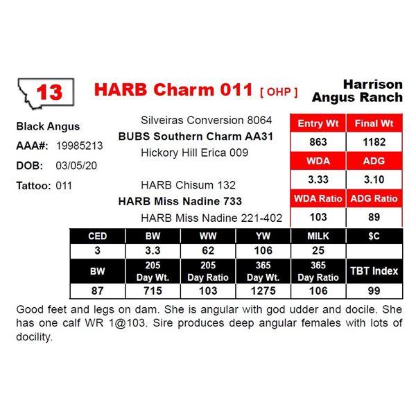 HARB Charm 011