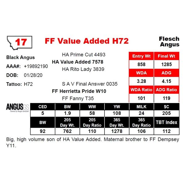FF Value Added H72