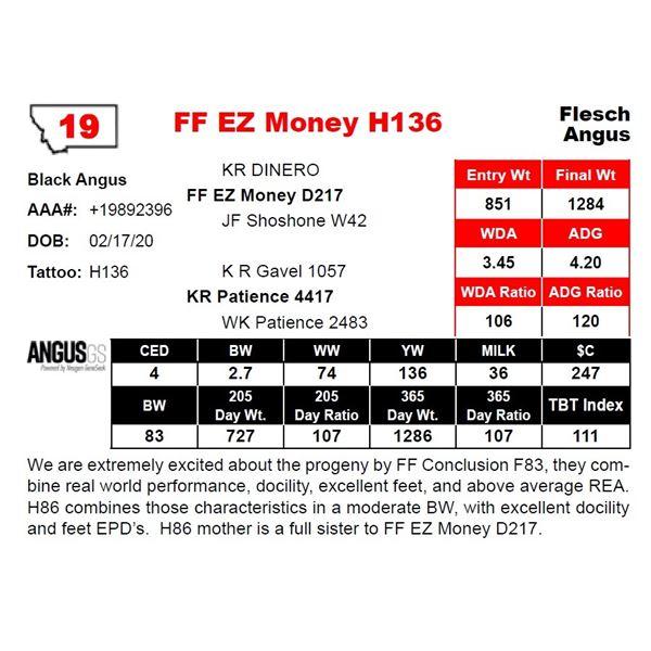 FF EZ Money H136