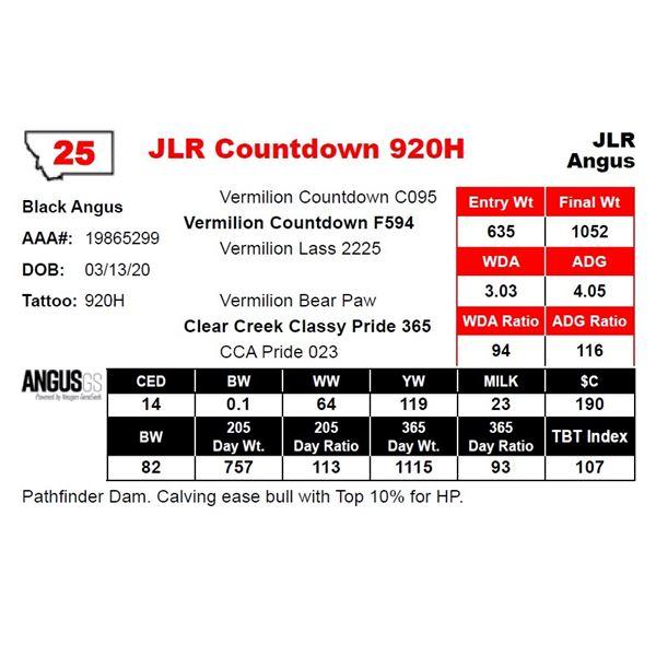 JLR Countdown 920H
