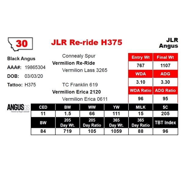 JLR Re-ride H375