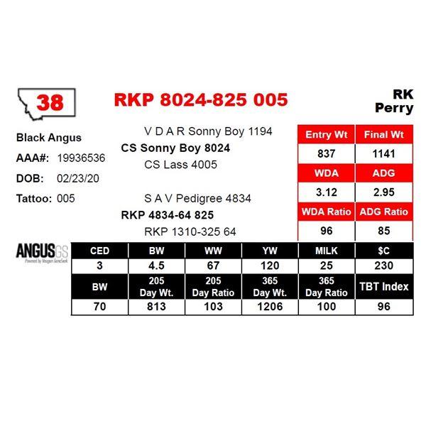 RKP 8024-825 005