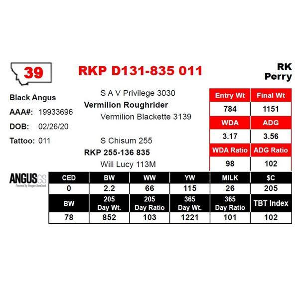 RKP D131-835 011