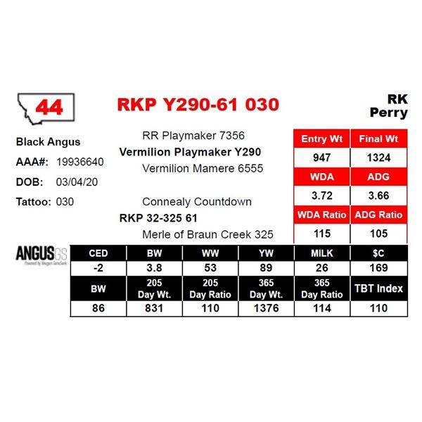 RKP Y290-61 030