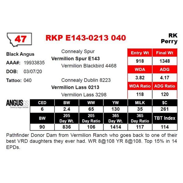 RKP E143-0213 040