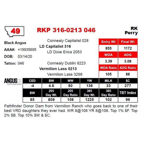 RKP 316-0213 046