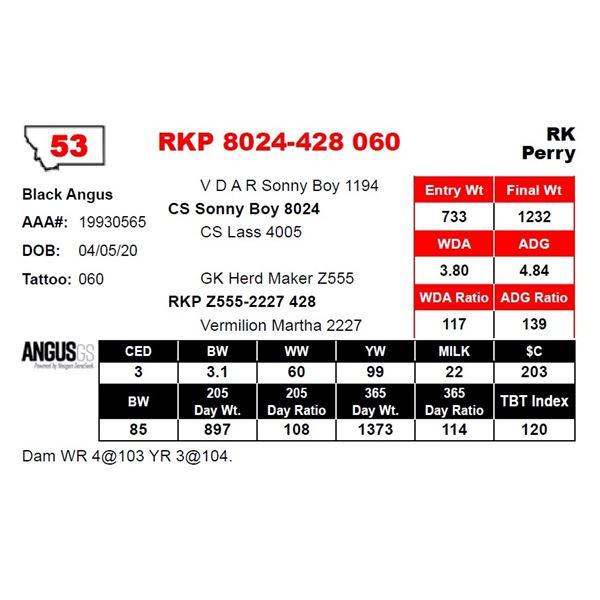 RKP 8024-428 060