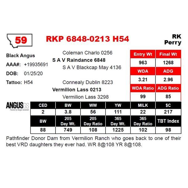 RKP 6848-0213 H54
