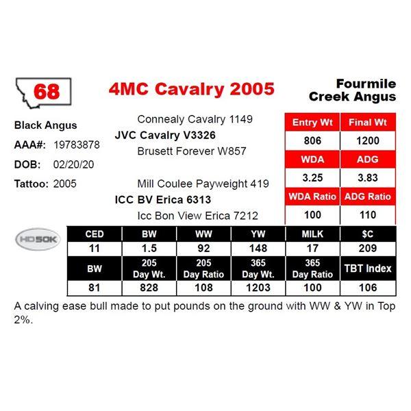 4MC Cavalry 2005
