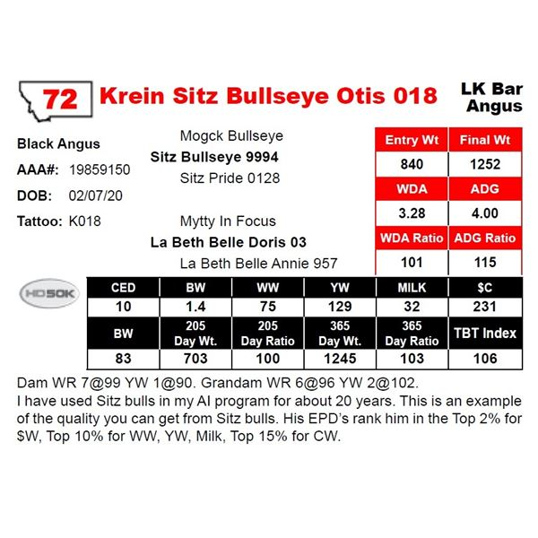 Krein Sitz Bullseye Otis 018