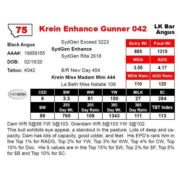 Krein Enhance Gunner 042