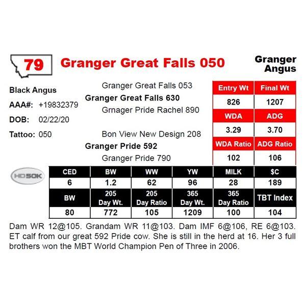 Granger Great Falls 050