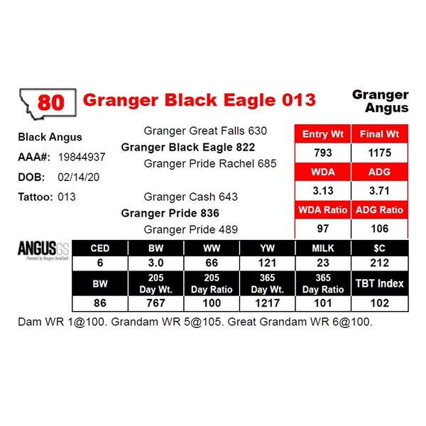 Granger Black Eagle 013