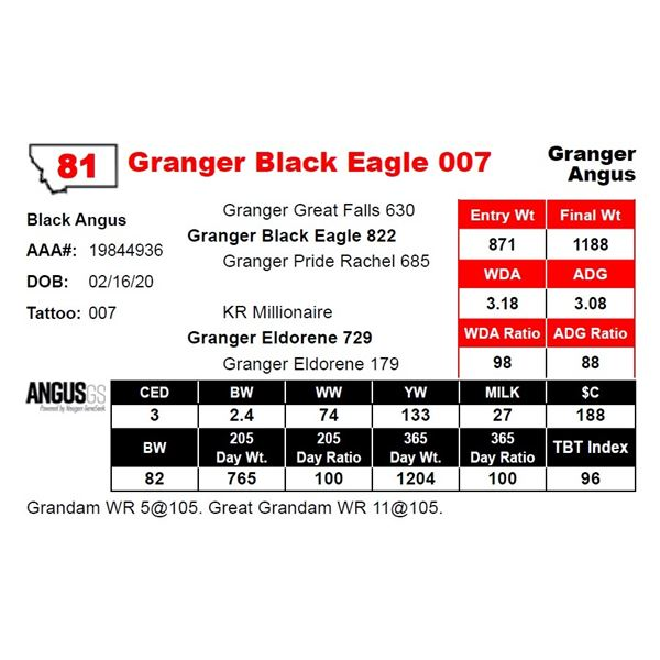 Granger Black Eagle 007
