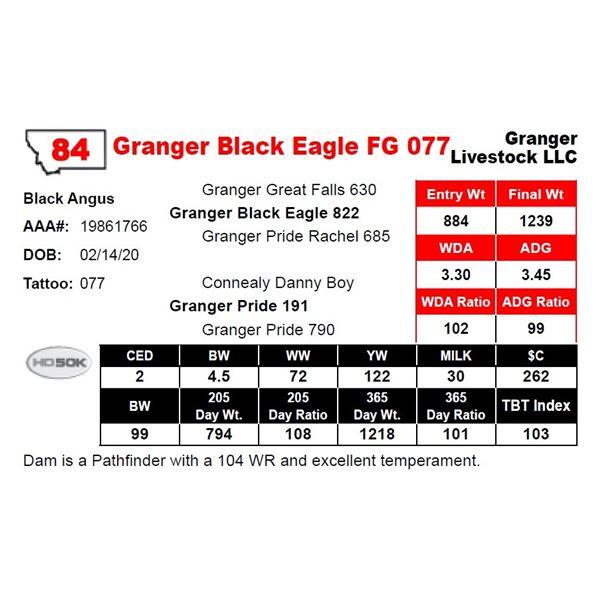 Granger Black Eagle FG 077
