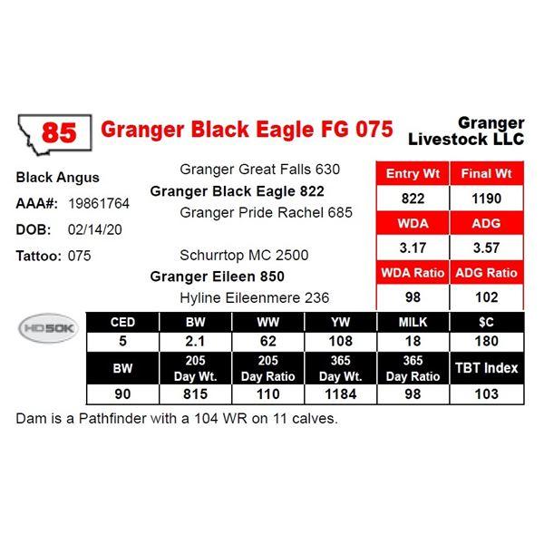 Granger Black Eagle FG 075