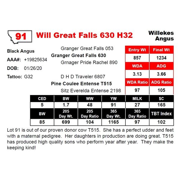 Will Great Falls 630 H32