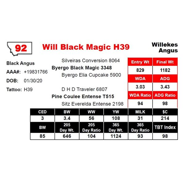 Will Black Magic H39