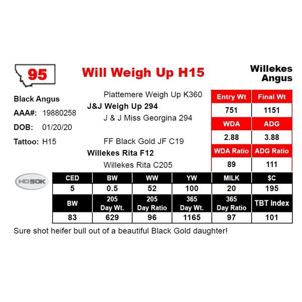 Will Weigh Up H15