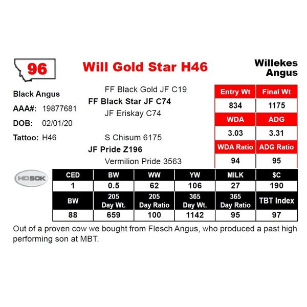 Will Gold Star H46