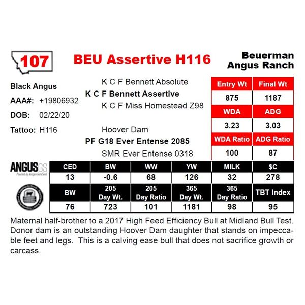 BEU Assertive H116