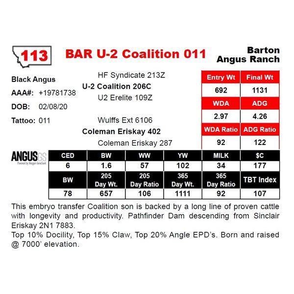 BAR U-2 Coalition 011
