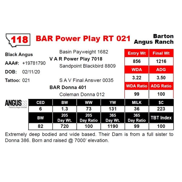 BAR Power Play RT 021
