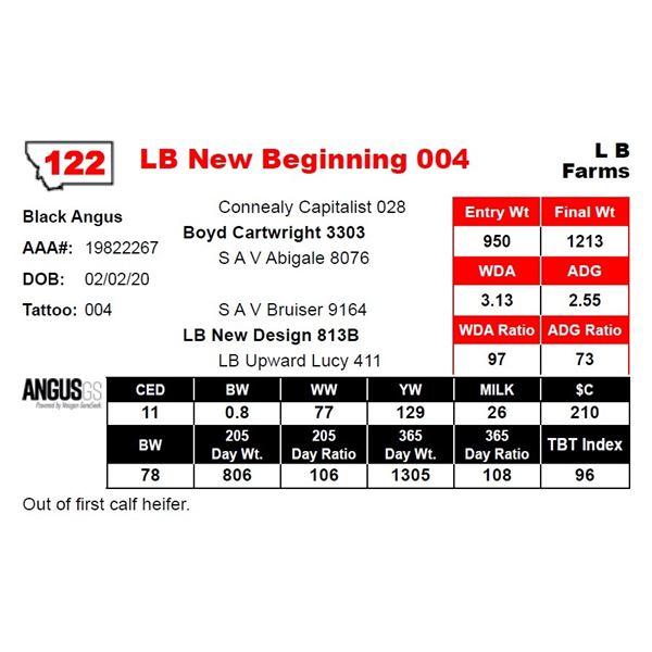 LB New Beginning 004