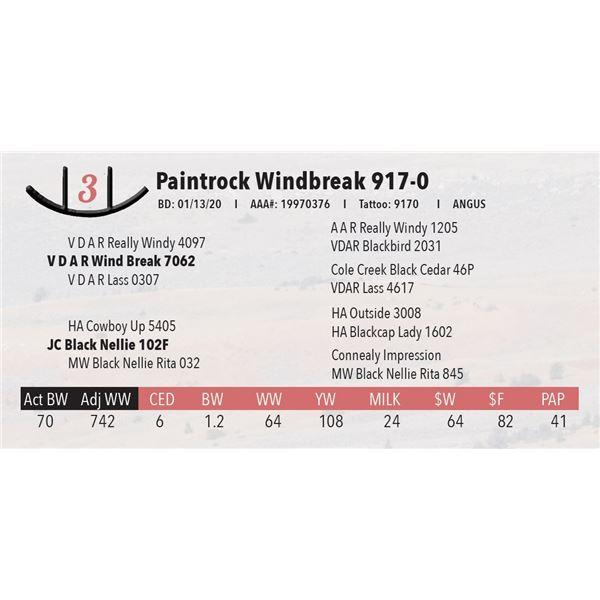 Paintrock Windbreak 917-0