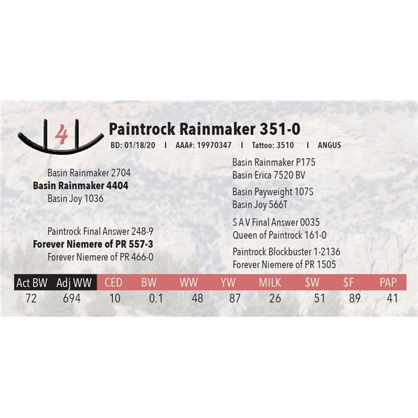 Paintrock Rainmaker 351-0