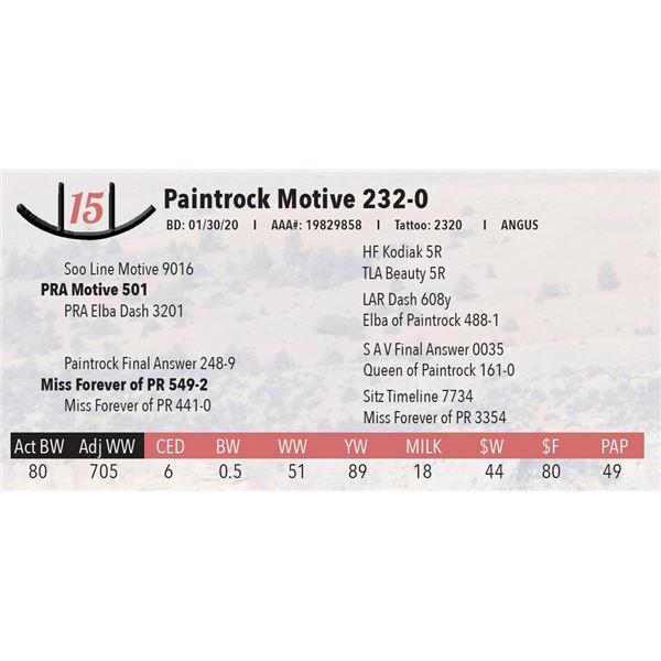 Paintrock Motive 232-0