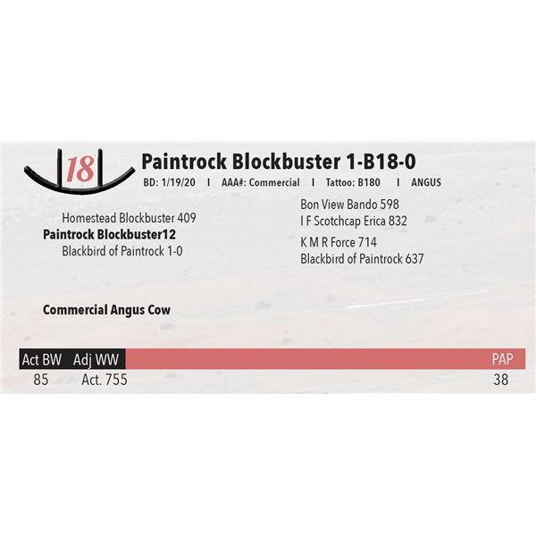 Paintrock Blockbuster 1-B18-0