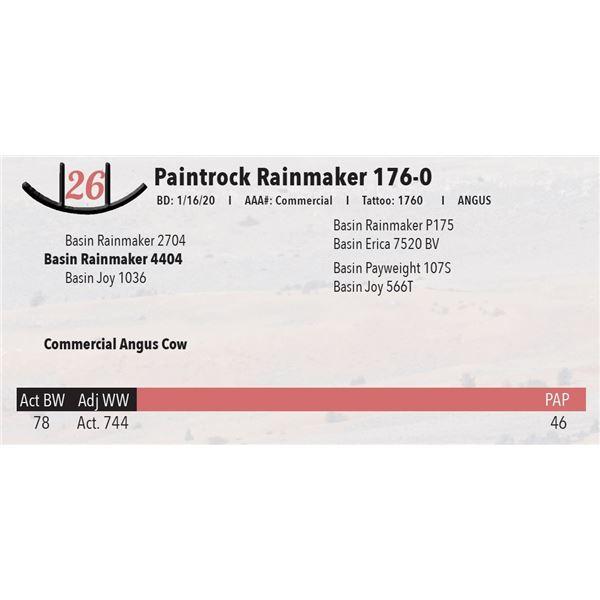 Paintrock Rainmaker 176-0