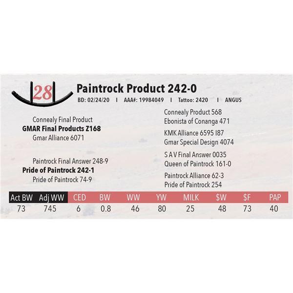 Paintrock Product 242-0
