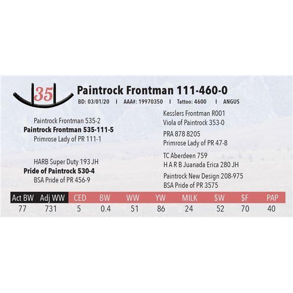 Paintrock Frontman 111-460-0